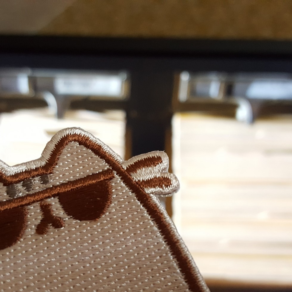 Pusheen Sunglasses
